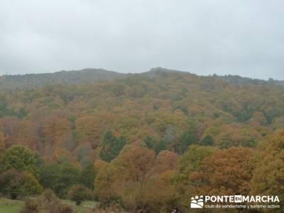 El Castañar de El Tiemblo, rutas trekking madrid; sierra de cabrera